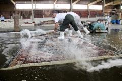 acu halı yıkama fabrikası